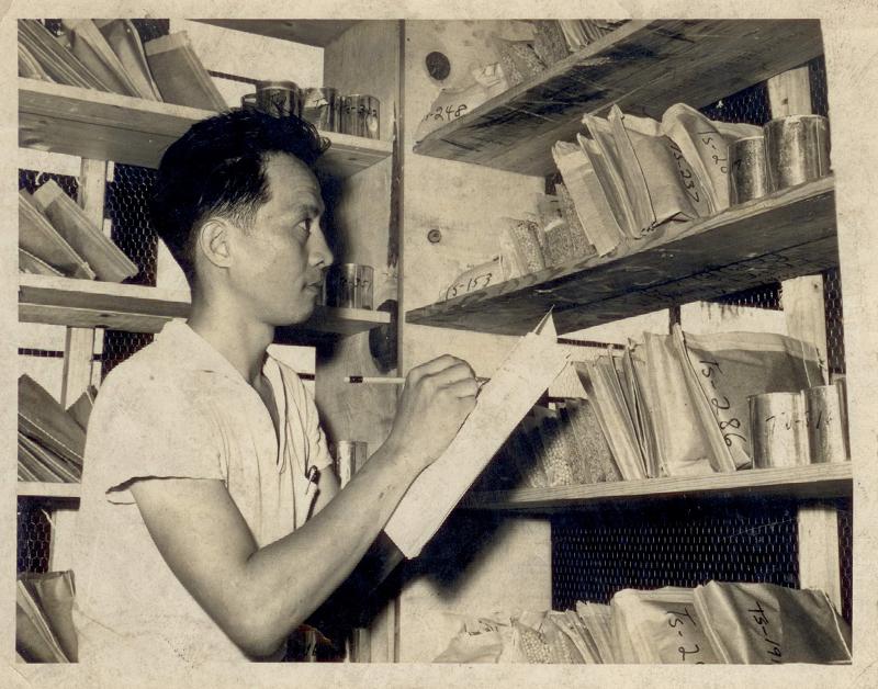 民國40年代,林正義教授在種子研究室